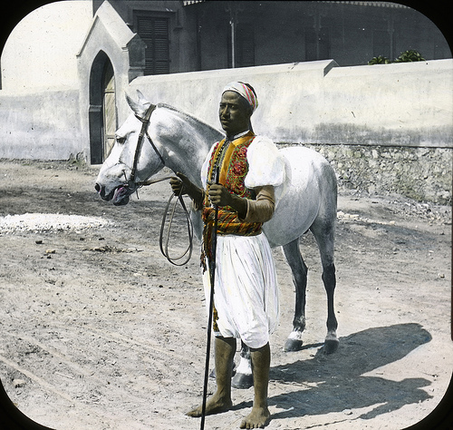What Arabians used to look like...(the horse, people, the HORSE)