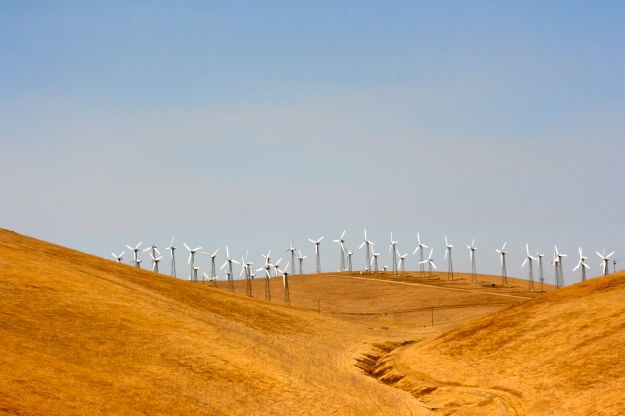 Windmill Farm, Altamont Pass